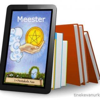 Tarot meester Tineke van Urk ebook cover