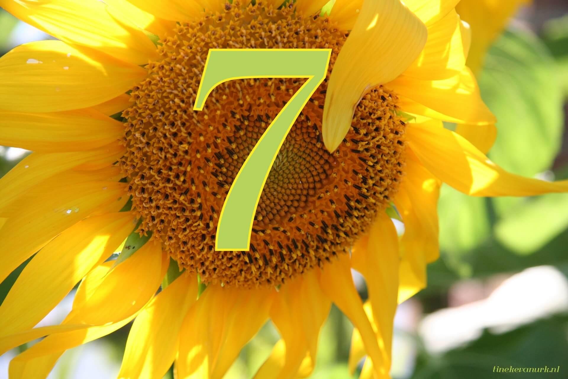 """Résultat de recherche d'images pour """"getallen symboliek 777"""""""