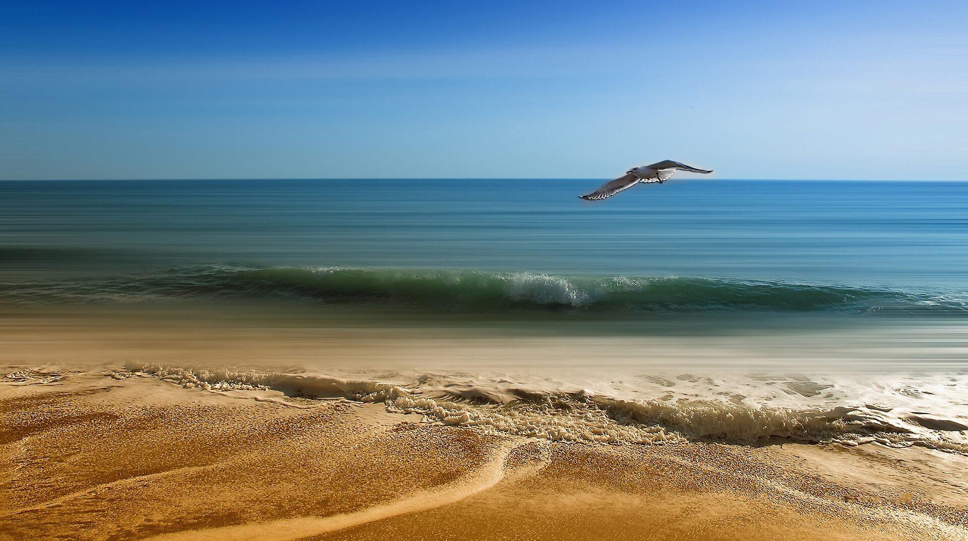 als druppels water van de zee met elkaar in verbinding