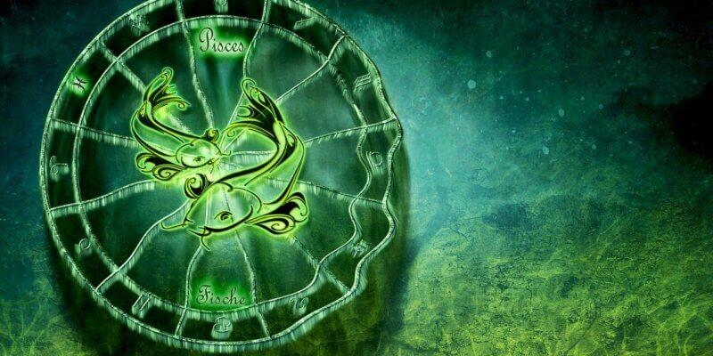 Wat zegt de horoscoop over je huisdier